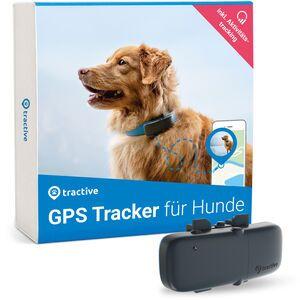 Localizzatore GPS Tractive per cani, con monitoraggio attività (modello 2020) | ABBONAMENTO ESCLUSO